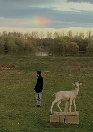 Person on a lawn turning to look at rainbow cloud.
